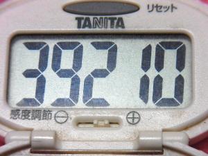 150117-291歩数計(S)