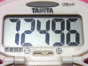 150118-291歩数計(S)