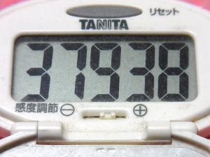 150124-291歩数計(S)