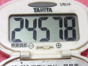 150228-291歩数計(S)