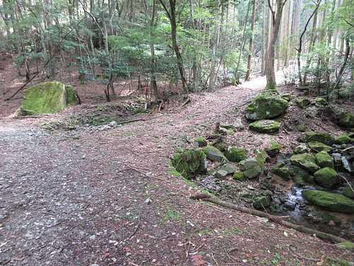 #MG_0443 薬師林道刈又山登山口に下りてきました