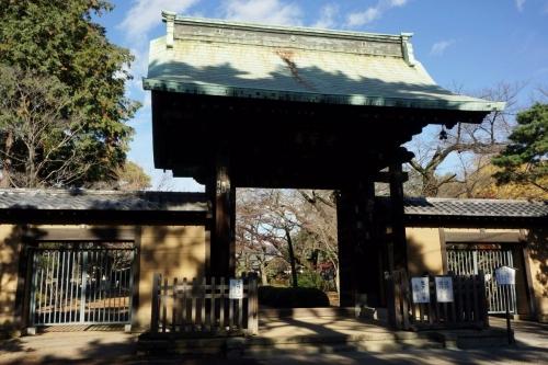 4豪徳寺 (1200x800)