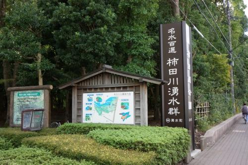 3柿田川 (1200x800)