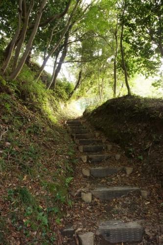 5登山 (800x1200)