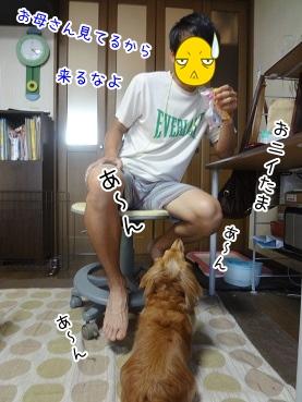kinako3082.jpg