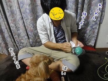 kinako3087.jpg