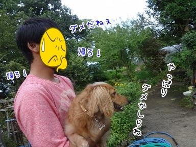 kinako3097.jpg
