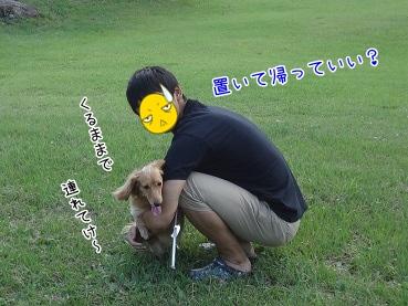 kinako3115.jpg