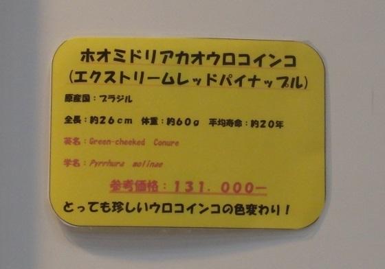 2015-01-0420150112_118.jpg