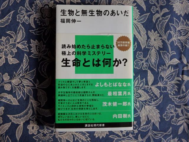 2015-01-0420150124_15.jpg