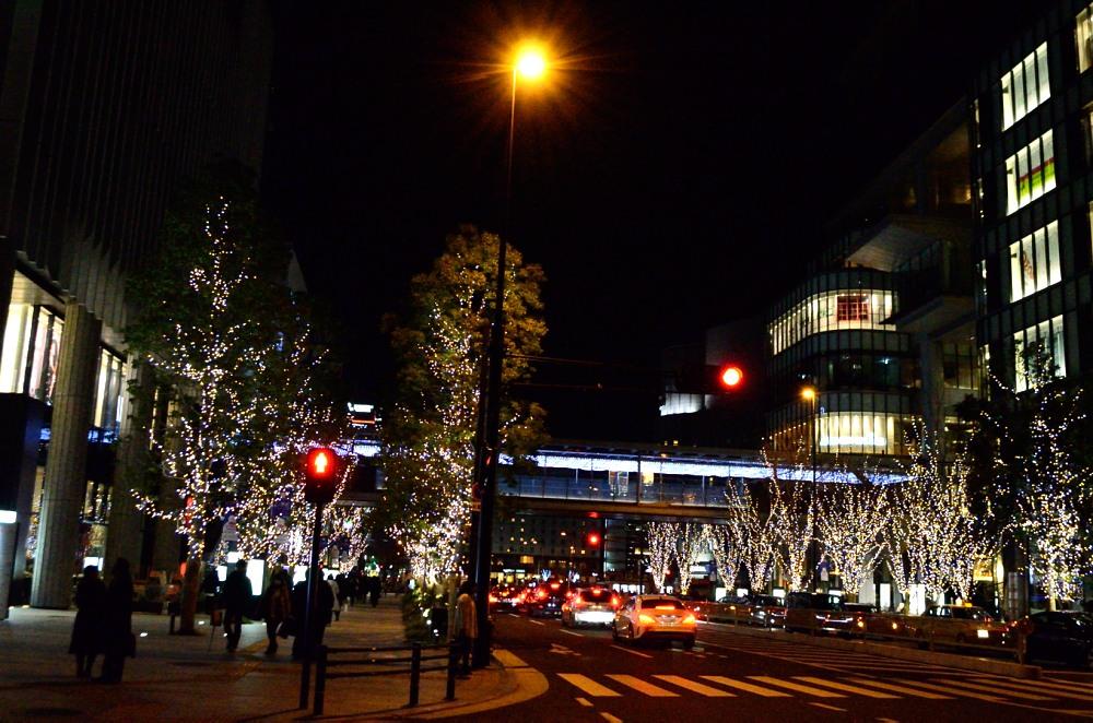_ヨドバシカメラツリーDSC_0611