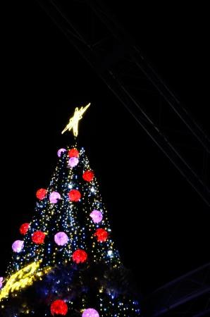 _南港クリスマスツリーDSC_0762