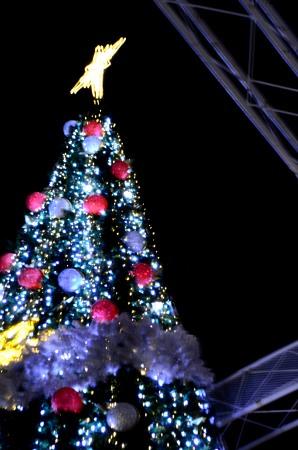 _南港クリスマスツリーDSC_0766