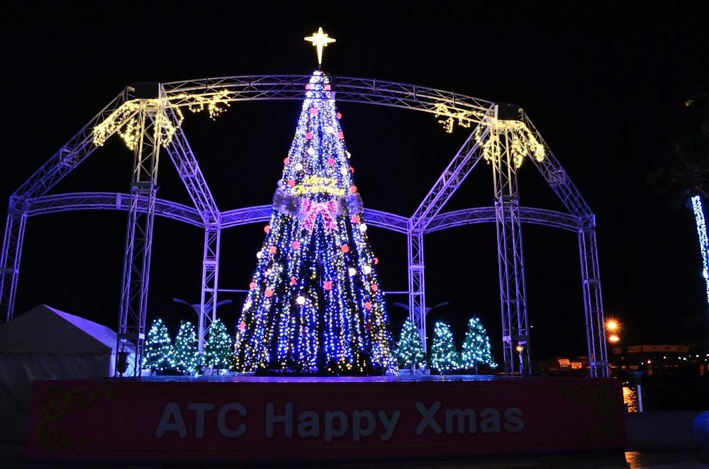 _南港クリスマスツリーDSC_0734