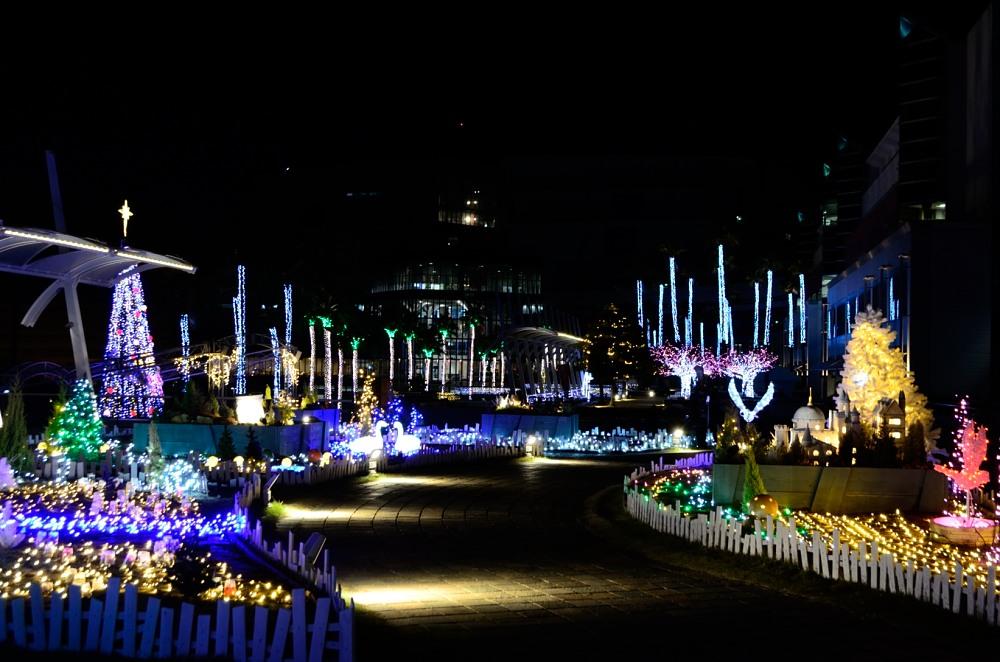 _南港クリスマスツリーDSC_0709