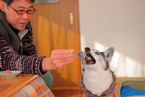 kansyoku (1)