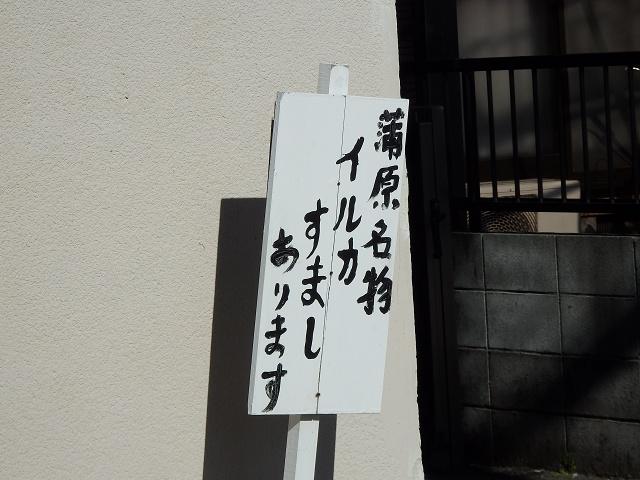 PC270119.jpg