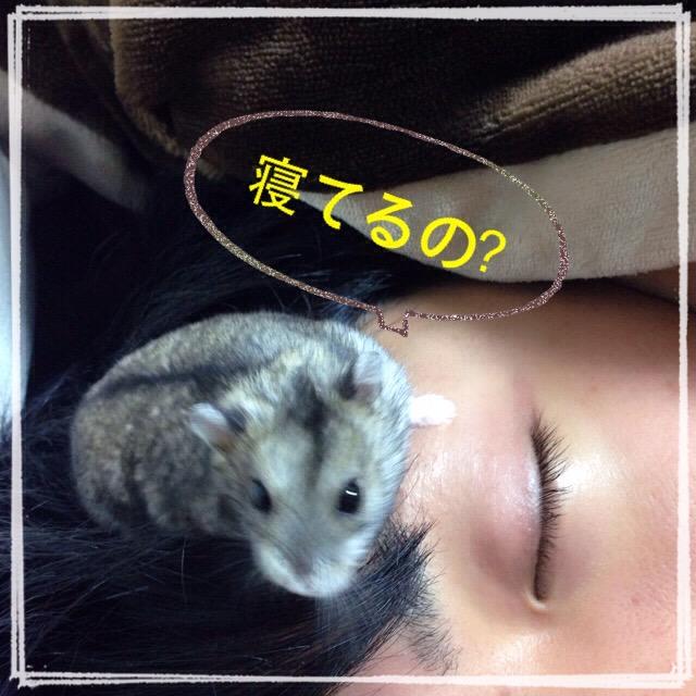 IMG_0494.jpg