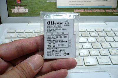 P1050044z.jpg