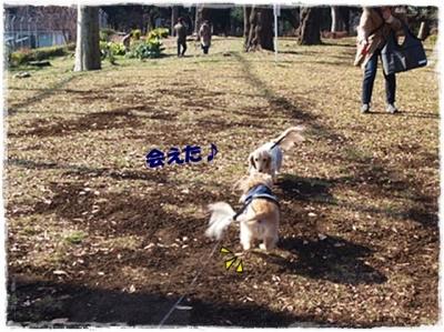 2015初公園ー5