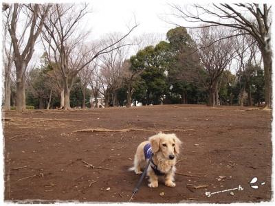 駒沢3-ちーん⑥