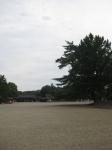 橿原神宮31