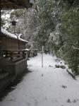 猿田彦神社(伊勢)-佐瑠女神社・御神田09