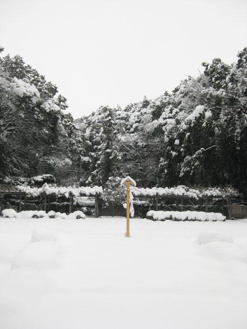 猿田彦神社(伊勢)-佐瑠女神社・御神田14