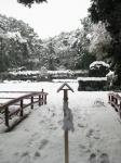猿田彦神社(伊勢)-佐瑠女神社・御神田12