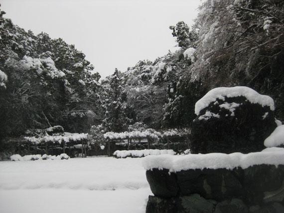猿田彦神社(伊勢)-佐瑠女神社・御神田17