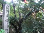 宇治神社03