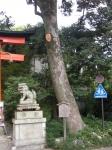 宇治神社04