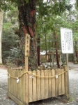 丹生中神社13