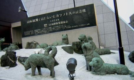 南極探検 カラフト犬