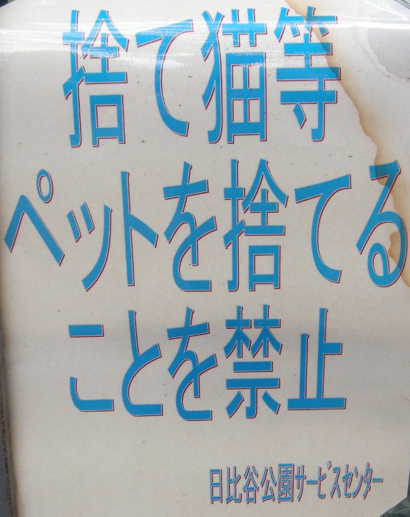 DSCN6386.jpg