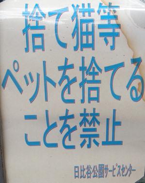 DSCN6386n.jpg