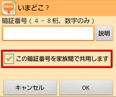 passcode2_jp.png