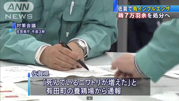 0049_Saga_tori_influenza_201501_02.jpg
