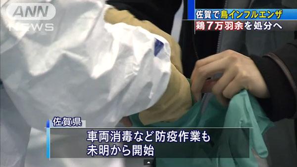 0049_Saga_tori_influenza_201501_06.jpg