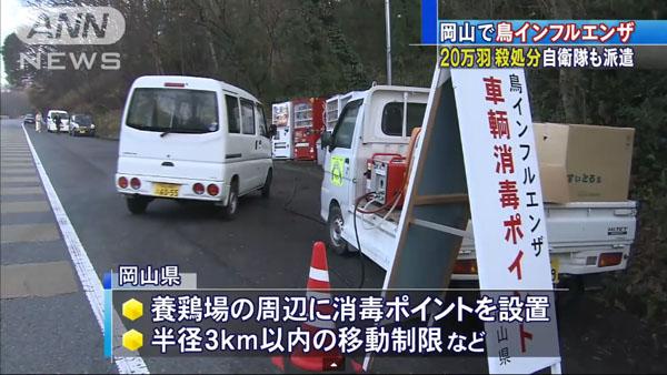 0050_Okayama_tori_influenza_201501_04.jpg