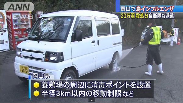 0050_Okayama_tori_influenza_201501_05.jpg