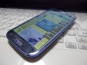 IMGP3851.jpg