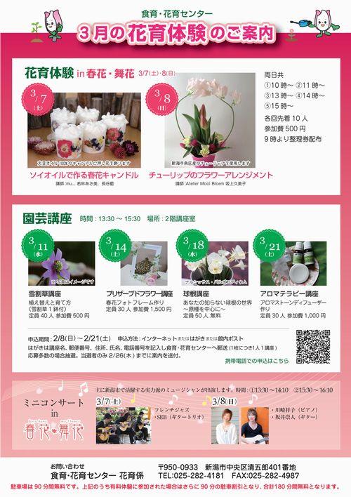 20150308春花舞花
