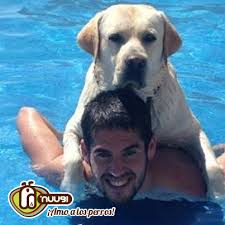 iscos dog messi