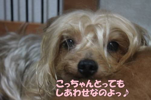 IMG_55470.jpg