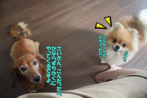 IMG_55750.jpg