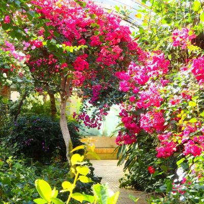 Botanical+Garden-1.jpg
