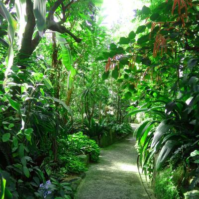 Botanical+Garden-2.jpg