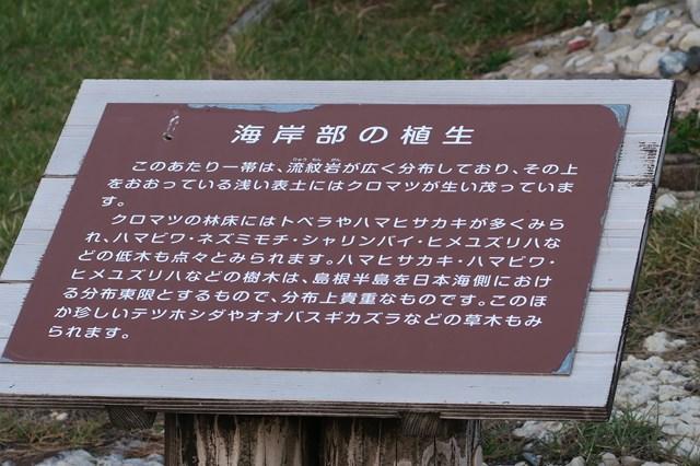 山陰の旅4 日御碕灯台 (19)
