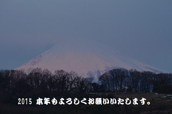 20150104-01.jpg